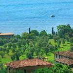 lago di garda olio di oliva il bagnolo eco lodge